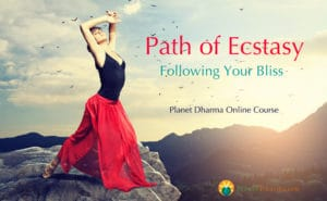 following your bliss online course