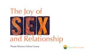 Planet Dharma- Joy sex relationship online