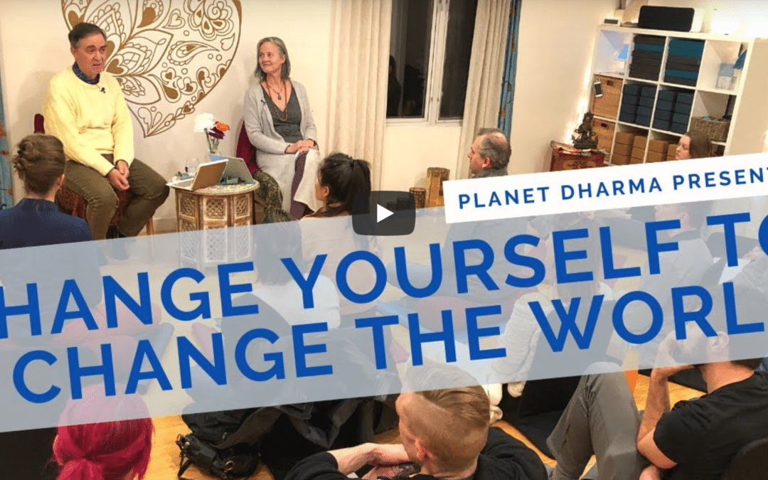 Change Yourself to Change the World: Practicing Insight Meditation